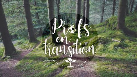 Profs en transition